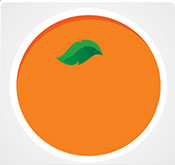 the gallery for gt orange fruit logo quiz