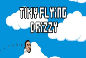 Tiny Flying Drizzy Cheats and Tips