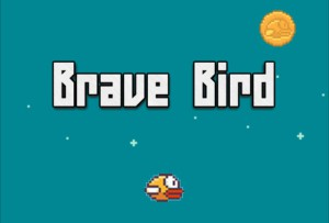 Brave Bird Cheats and Tips