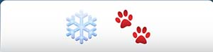 emoji-pop-holiday-edition-answers-level-008